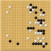 本因坊秀策棋譜感想11