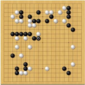 本因坊秀策棋譜感想14