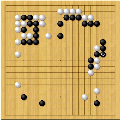 本因坊秀策棋譜感想17
